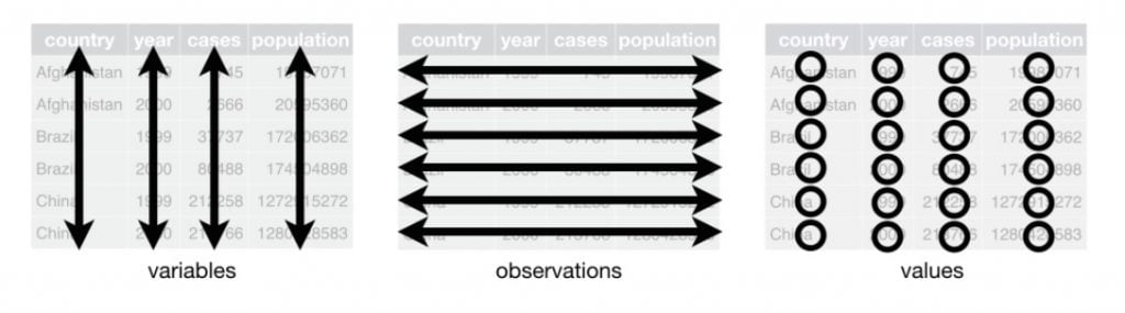 organisation des données dans Excel